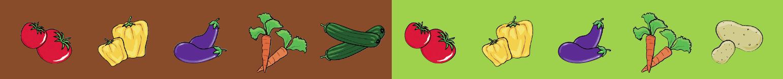 Mein Gemüsebeet